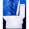 整装卫浴 虹吸式抽水马桶节水防臭坐便器家用陶瓷座便器