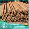 防迅木桩 河道打桩木 落叶松澳松原木杉木桩10-16cm4米绿化支撑杆